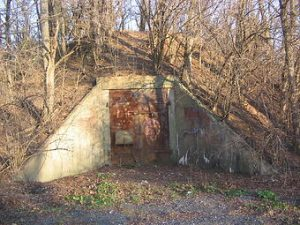 photo shows a bunker at alvira, overgrown and rusted